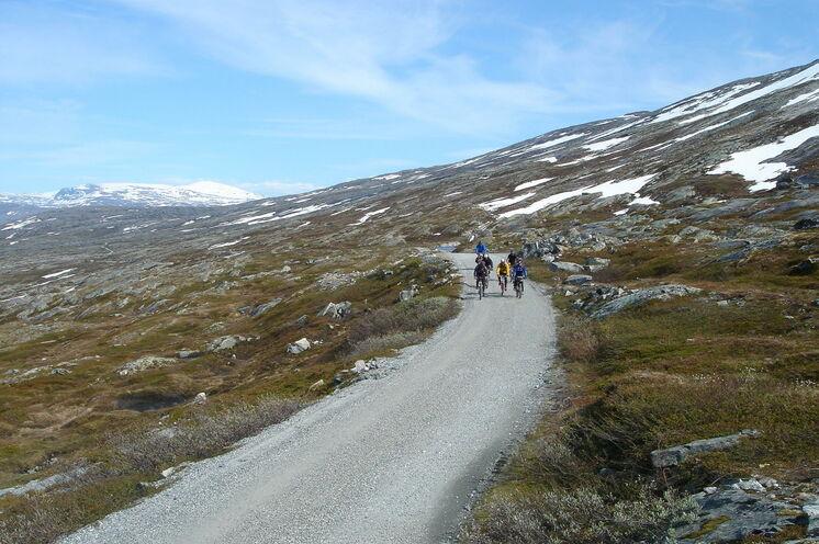 Der Aursjøvegen Pass und eine der spektakulärsten Straßen Norwegens! Am Besten auf dem Fahrrad zu erleben!