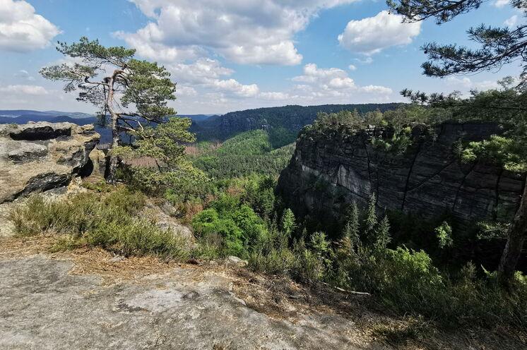 In der Kernzone des Nationalparks – Blick vom Kleinen Winterberg gen Osten