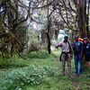 Mt. Meru-Besteigung mit Safari im Arusha-Nationalpark