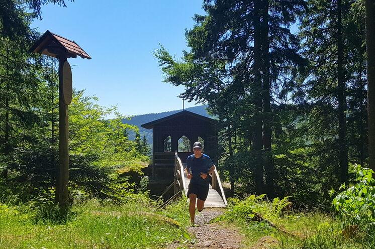 Auf Goethes Spuren führt uns unsere erste Etappe von Ilmenau nach Oberhof