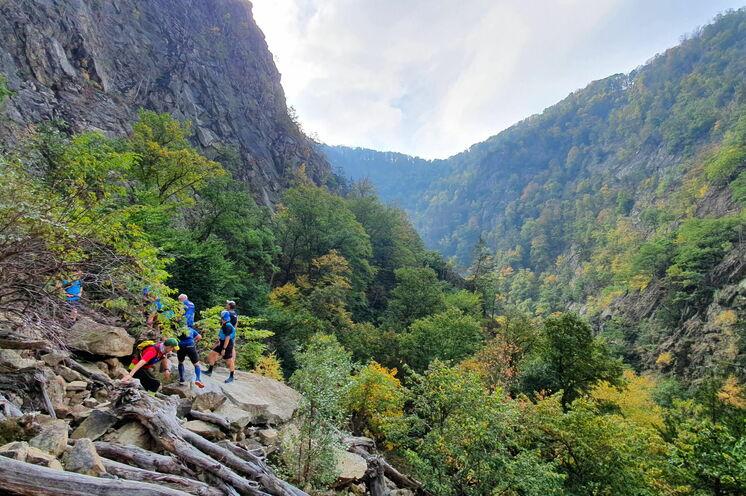 Das Bodetal hat teils alpinen Charakter und ist ein Paradies für Liebhaber des Trailrunnings