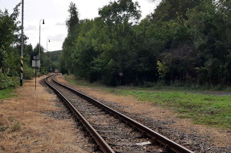 Sie  fahren umweltfreundlich mit der Bahn