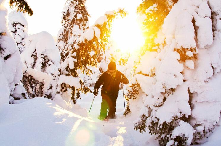 Entkommen Sie mit jedem Schritt der Hektik des Alltags etwas mehr und geniessen Sie die unendlichen Weiten der verschneiten Wälder