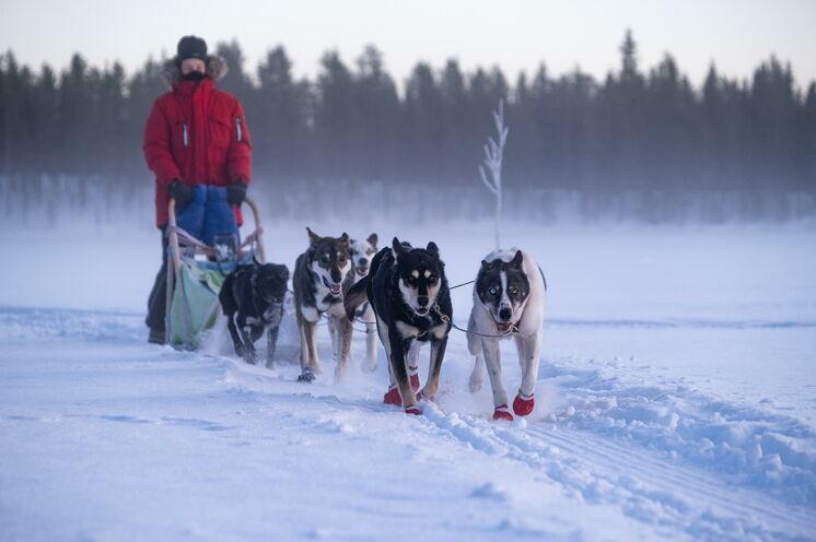 Warm eingepackt die weiß gepuderten Bäume, zugefrorenen Seen und sanften Hügel an sich vorbeiziehen lassen