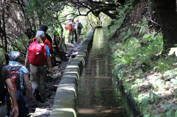 Madeira lebt von einem einzigartigen Wassersystem, den Levadas.