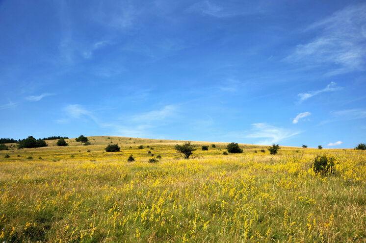 Auf den Hochebenen befinden sich die beiden größten Hochmoore der Rhön. Eines davon, das Schwarze Moor, liegt am Dreiländereck Hessen, Thüringen und Bayern, das Rote Moor zwischen Wüstensachsen und dem fränkischen Bischofsheim.