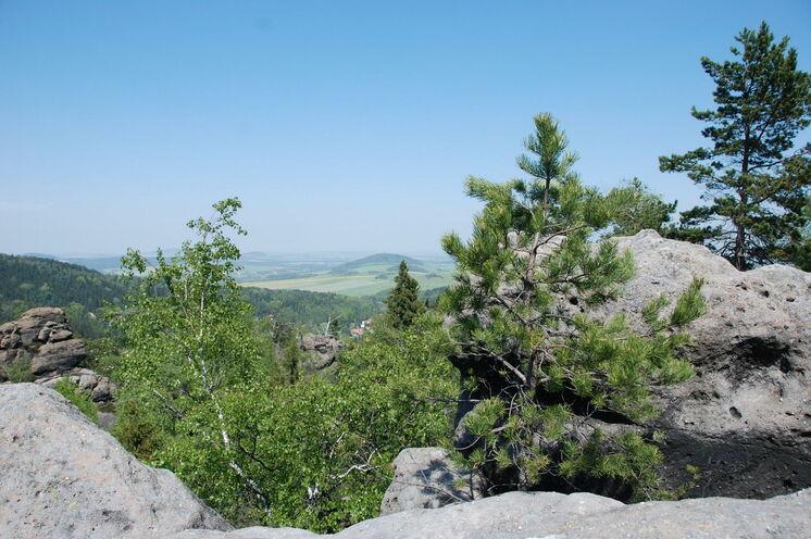 Immer wieder eröffnen sich Fernblicke bis zum Isergebirge und zum Riesengebirge
