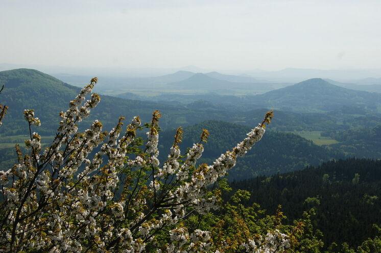 Auch am Hochwald, dem zweithöchsten Berg des Zittauer Gebirges,  werden Sie sich eines überwältigenden Panoramablickes erfreuen