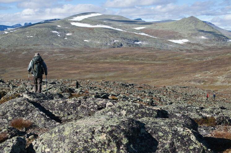 Sie tragen Ihr eigenes Gepäck und laufen in ruhigen Etappen durch das schwedische Fjell