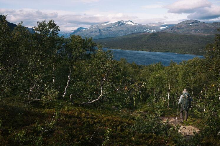 Seen, Berge und kleine Kiefernwälder prägen die weiten Landschaften Schwedisch Lapplands
