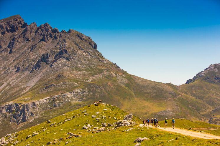 Idyllische Almen und Kuhweiden sind in den Picos ebenso zu finden wie hochalpine Regionen.