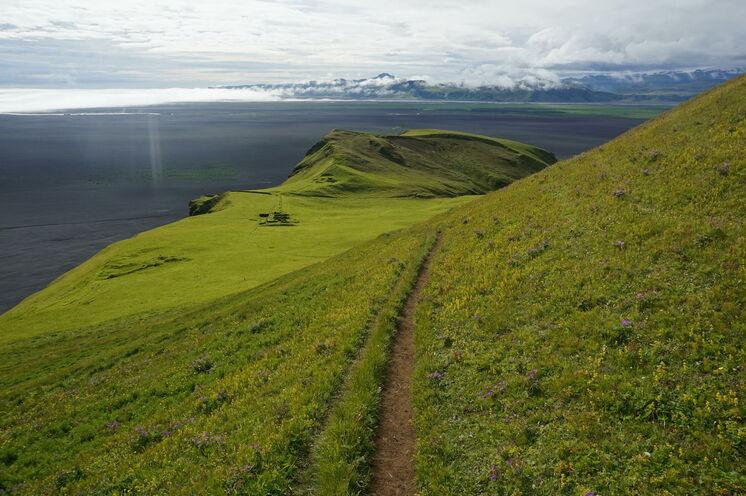 Wandern an der Südküste mit Blick über schwarzen Sandstrand und Gletscher