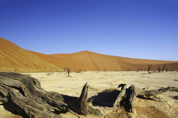 Die Wüste Namib gilt als eine der ältesten Wüsten der Erde