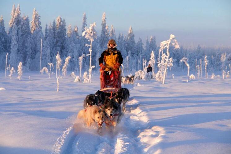 Gut ausgesrüstet lotst Sie Ihr Gespann durch den Schnee