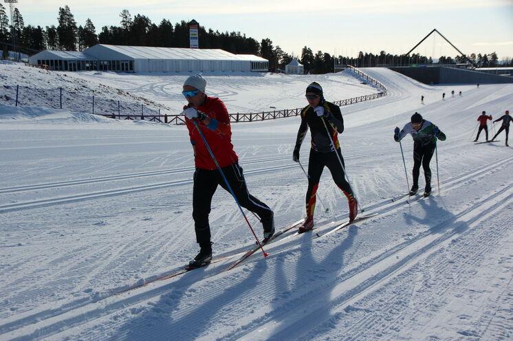 Auf unseren täglichen Trainingsfahrten - hier auf den WM- & Weltcup Loipen in Falun - holen Sie sich den Feinschliff für den Vasaloppet
