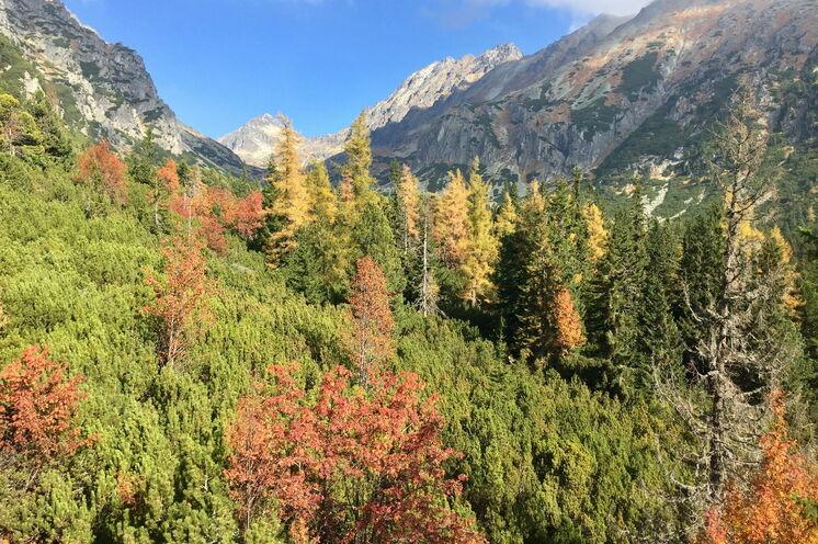 Herbststimmung in der Hohen Tatra