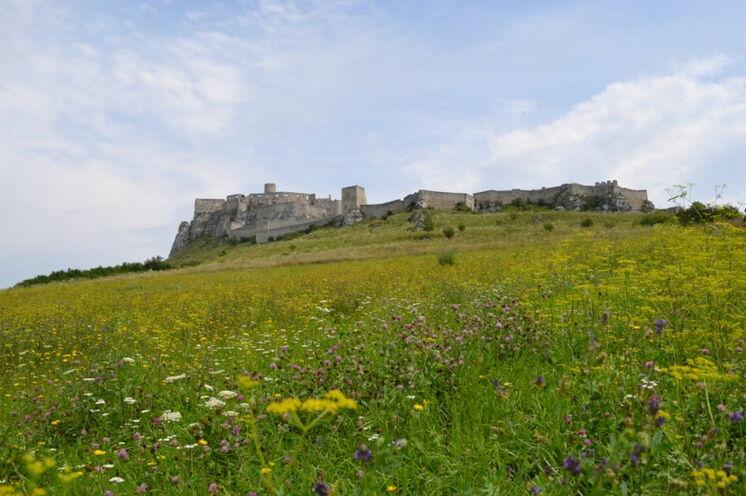 Spišský hrad (dt. Zipser Burg)