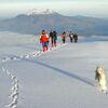 Vulkantrekking Cotopaxi und Chimborazo