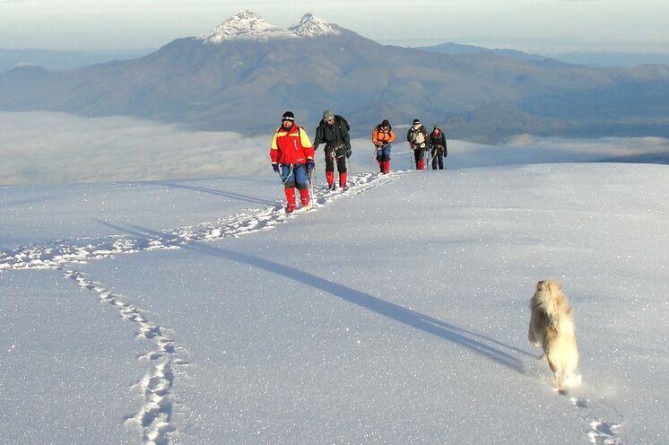 Auf zum Cotopaxi mit Berghund Pepe, dem treuen Begleiter unseres lokalen Teams