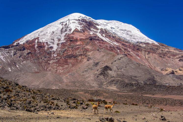 Der hehöpunkt der Reise, die Chimborazo-Besteigung (6310 m)