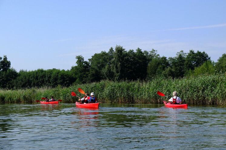 Kajaktour auf dem Fluss Pisa - es lohnt sich, Masuren auch aus dieser Perspektive zu erkunden