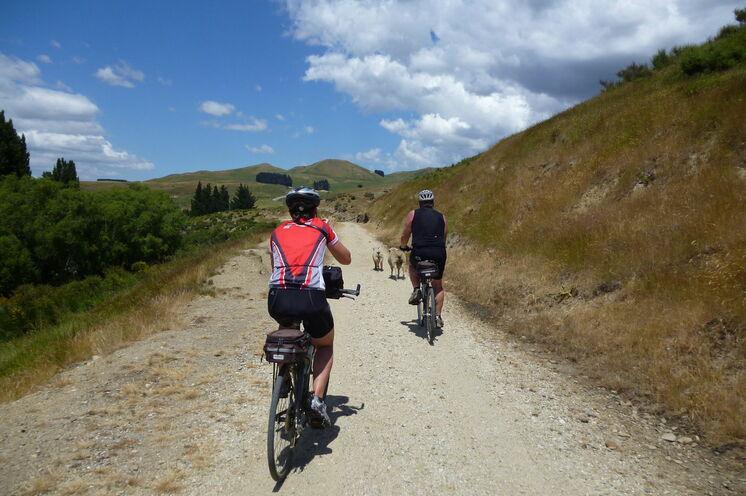Otago Rail Trail  - ein besonderer Fahrradabschnitt.
