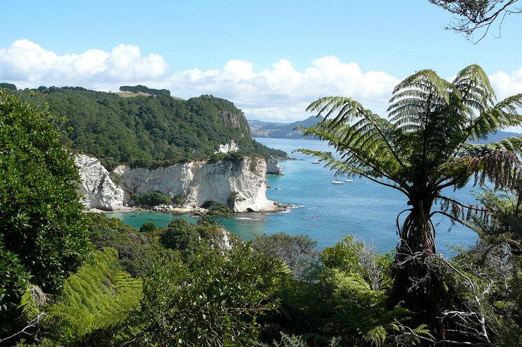 Neuseelands Nordinsel - hier fahren Sie auf dem Hauraki Rail Trail