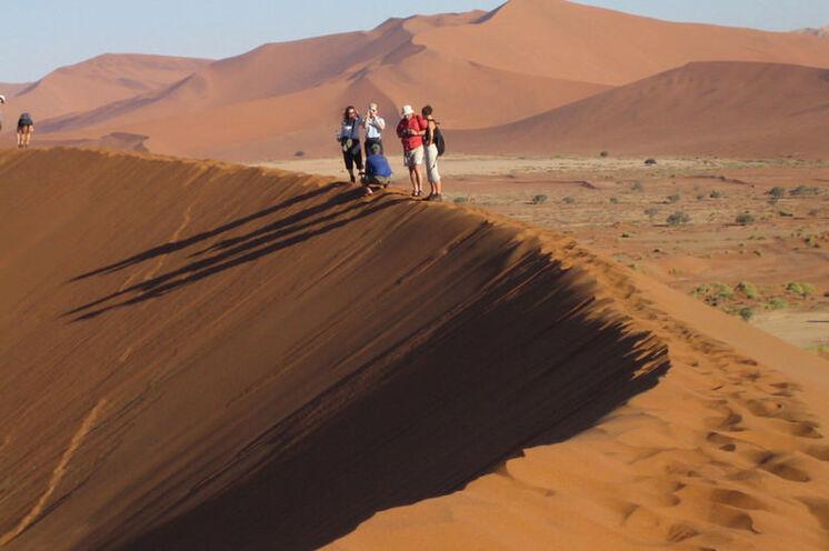 In den Morgen- und Vormittagsstunden sind die Temperaturen in der Namib-Wüste noch angenehm und tolle Kontraste zu sehen (5. Tag).