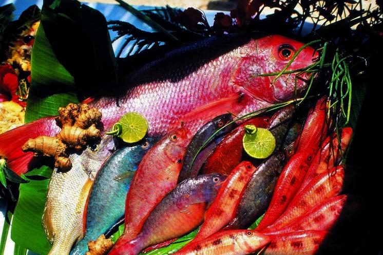 Genuß steht bei dieser Reise im Mittelpunkt – natürlich darf ein breites Angebot an Fisch nicht fehlen