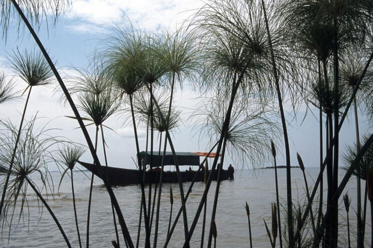 Am Anfang gehts per Boot über den Viktoriasee