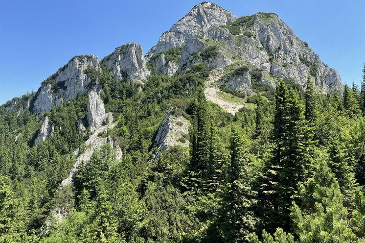 Im Nationalpark Königsteingebirge besteigen Sie optional den Gipfel des Kleinen Königstein