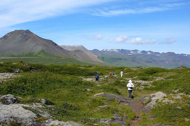 Querfeldein bzw. fast weglos (wie hier auf Snæfellsnes) geht es meistens in Island zu.