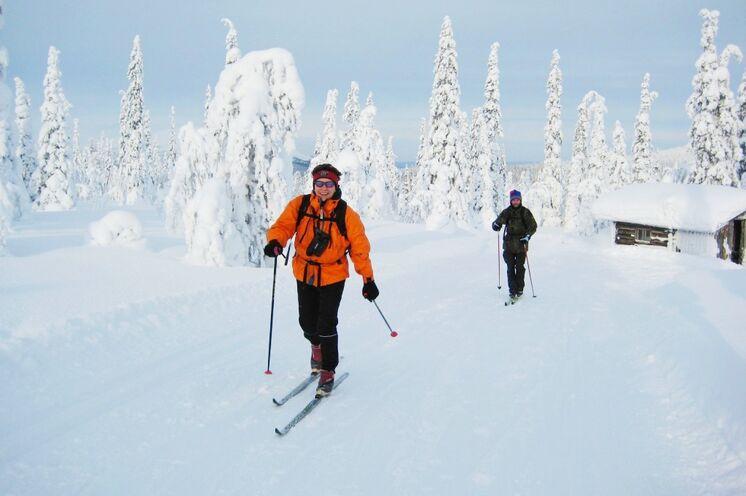 Für erfahrene Skilangläufer ist die Tour über Polarkreis ideal!