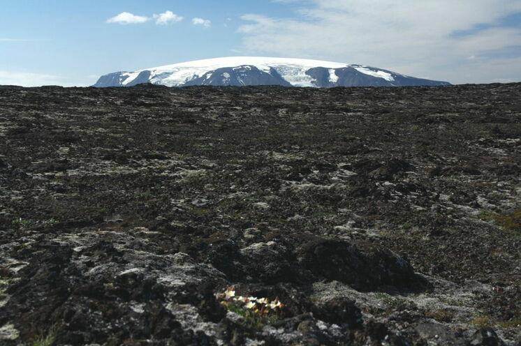 Bilder und Eindrücke, die Niemanden mehr loslassen (im Hintergrund der Eiríksjökull).