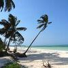 Reisebaustein: Sansibar - Gewürze, Geschichte und Geruhsamkeit