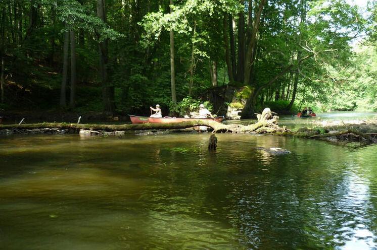 Im Nationalpark ist die Drawa naturbelassen